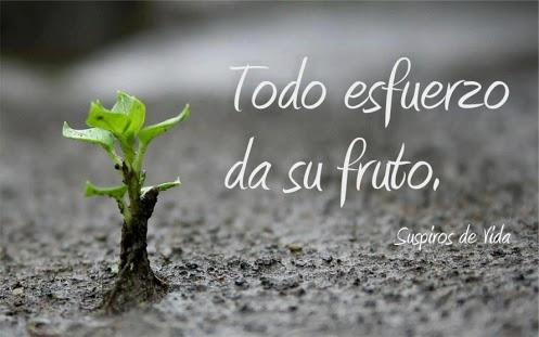 http://ecolisima.com/wp-content/uploads/2014/03/todo-esfuerzo-tiene-su-recompensa.jpg