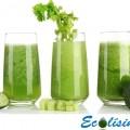 5 Recetas batidos verdes